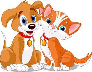 Bigstock-dog--cat-s-friendship-15041978