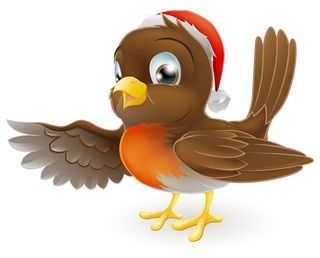 Bigstock-Christmas-Robin-Bird-Pointing-35979610