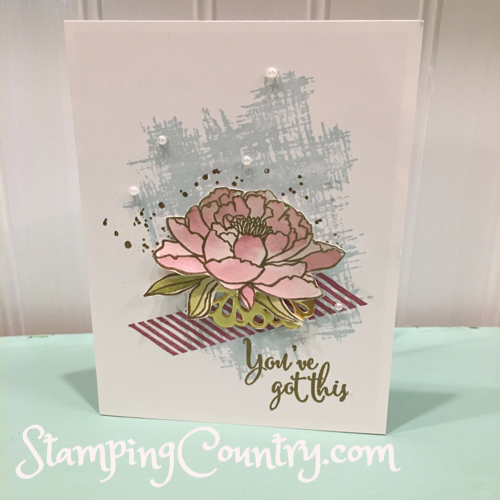 You've Got This Stampin' Up!