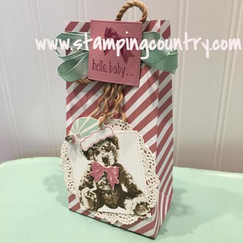 Baby Bear Gift Bag