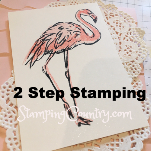 2 Step Stamping Fabulous Flamingo