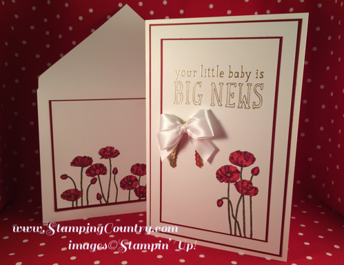 Pleasant Poppies BiG News Baby Card