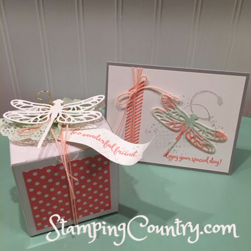 Dragonfly Dreams Cupcake Box & Card