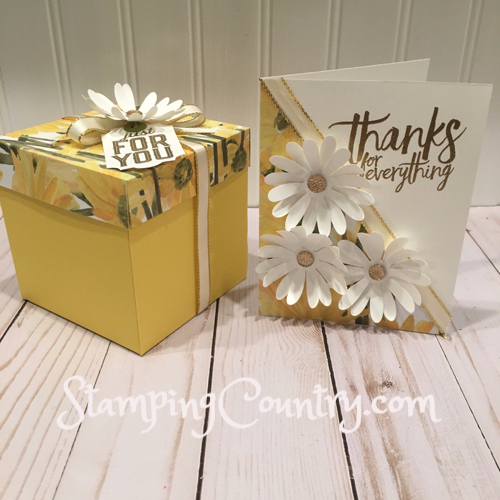 Daisy Delight Gift Box & Card